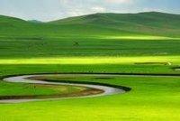 莫尔道嘎国家森林公园风景
