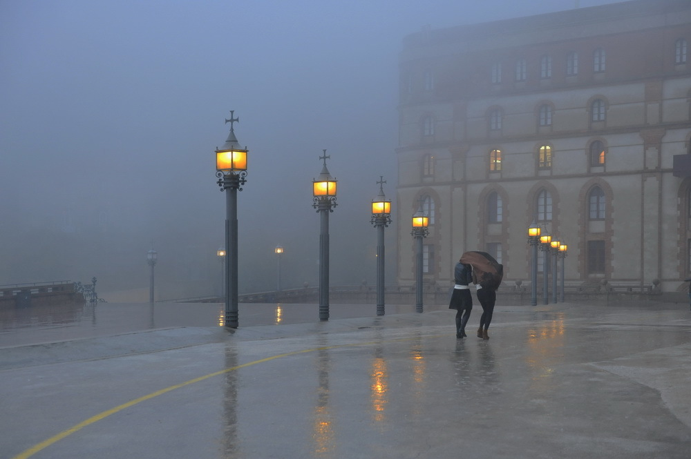 在雨中_360百科