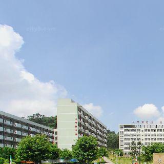 东莞南博职业技术学院