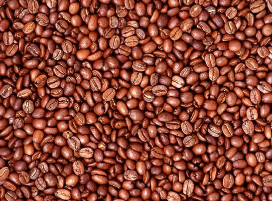 咖啡主要有效成分咖啡因和其结构类似物茶碱有很强