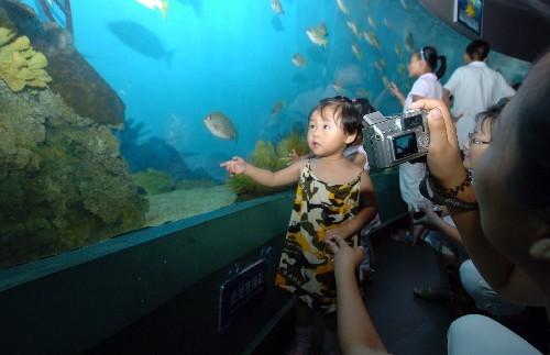 集海洋科普教育,海洋生物研究,驯养和展示,休闲娱乐为一体.